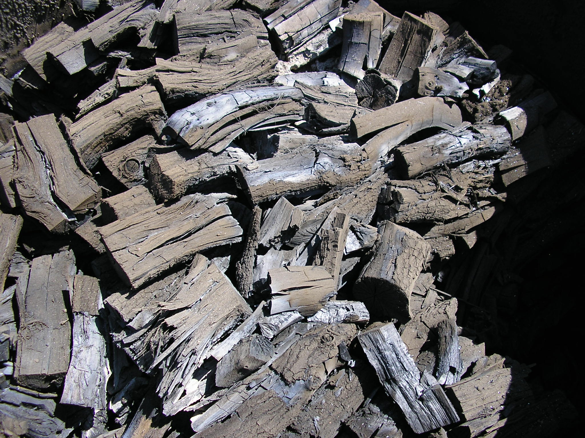 Charcoal The Good The Bad And The Dirty The Heartwood Blog