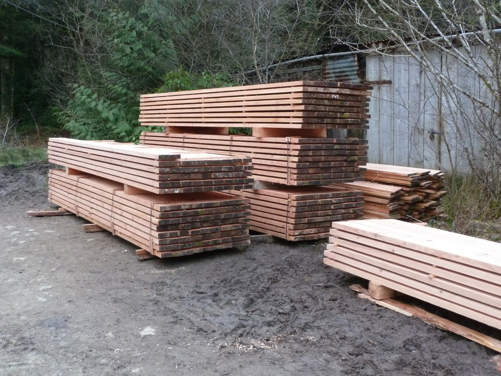 sawn Larch timber with mobile sawmill